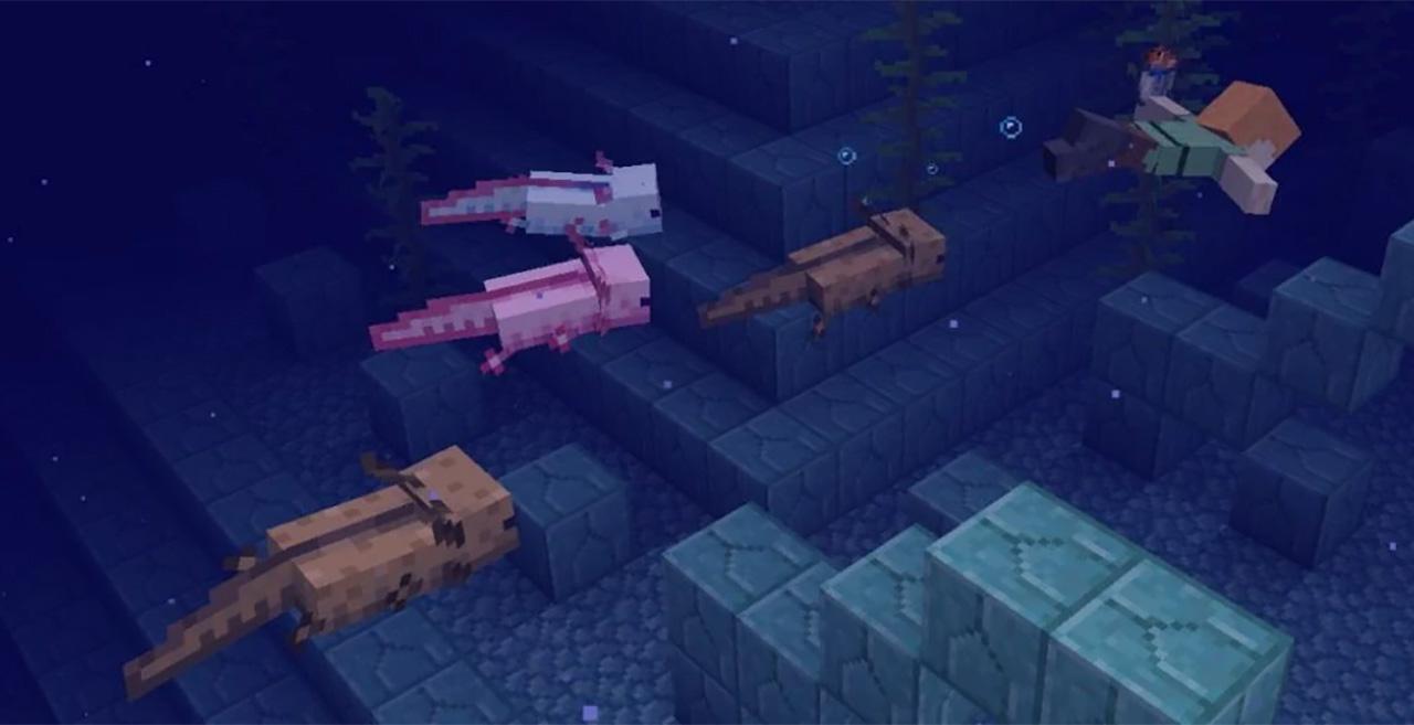 """A new version of Minecraft 1.17 has been released. Update """"Caves and Mountains"""", part 1"""